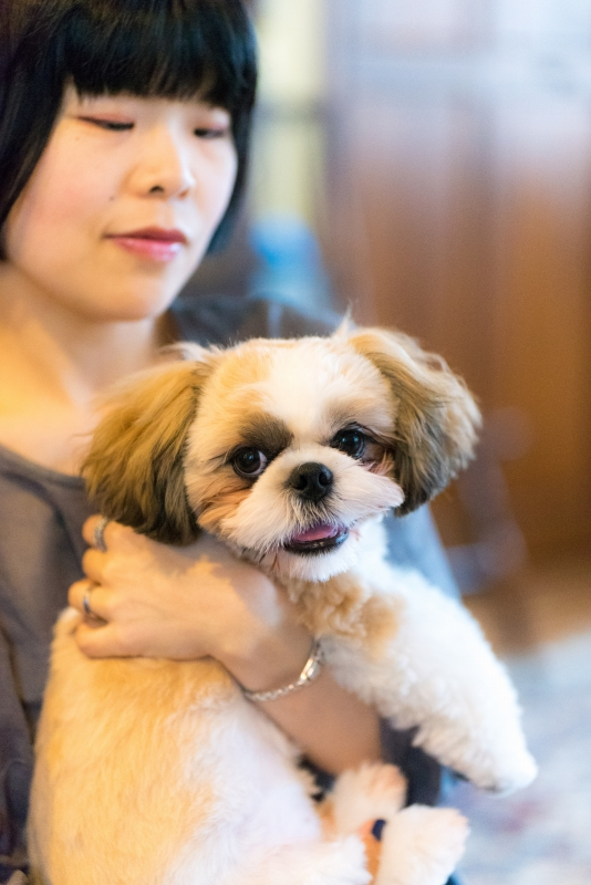 犬との記念写真なら口コミで広まっている出張撮影タイプの写真スタジオ「ペットショット」にお任せdog-photo-0150