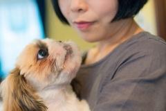 犬との記念写真なら口コミで広まっている出張撮影タイプの写真スタジオ「ペットショット」にお任せdog-photo-0190