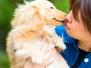 愛犬と公園で撮影 江東区 Fさん