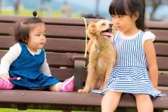 猫と⼀緒に記念写真を撮影できる出張タイプの写真スタジオ【ペットショット】dog-011-004