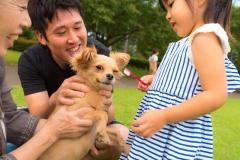 猫と⼀緒に記念写真を撮影できる出張タイプの写真スタジオ【ペットショット】dog-011-020