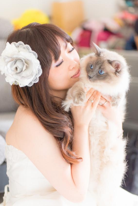 猫と一緒に記念写真を撮影できる出張タイプの写真スタジオ【ペットショット】cat-photo000