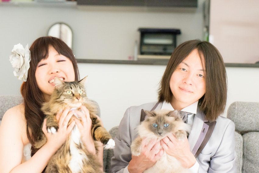 猫と一緒に記念写真を撮影できる出張タイプの写真スタジオ【ペットショット】cat-photo008
