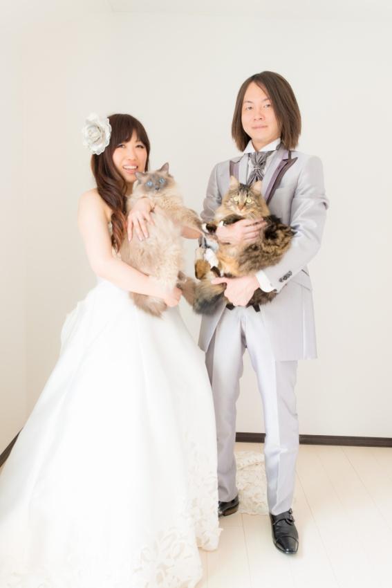 猫と一緒に記念写真を撮影できる出張タイプの写真スタジオ【ペットショット】cat-photo010