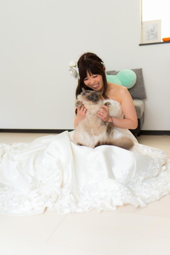 猫と一緒に記念写真を撮影できる出張タイプの写真スタジオ【ペットショット】cat-photo012
