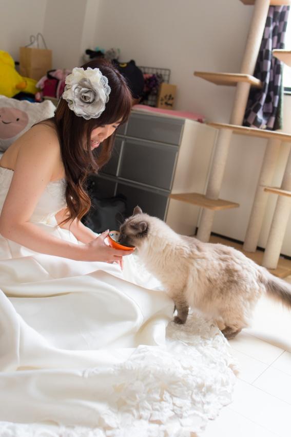 猫と一緒に記念写真を撮影できる出張タイプの写真スタジオ【ペットショット】cat-photo013