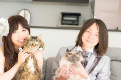 猫と一緒に記念写真を撮影できる出張タイプの写真スタジオ【ペットショット】cat-photo009