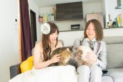 猫と一緒に記念写真を撮影できる出張タイプの写真スタジオ【ペットショット】cat-photo017