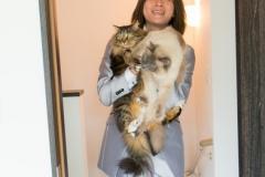 猫と一緒に記念写真を撮影できる出張タイプの写真スタジオ【ペットショット】cat-photo019