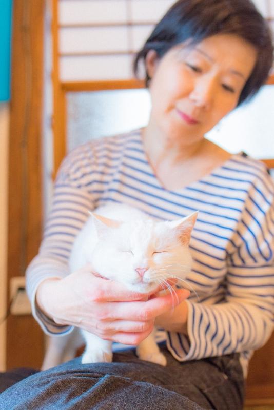 猫と一緒に記念写真を撮影できる出張タイプの写真スタジオ【ペットショット】cat-photo-0110