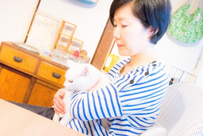 猫と一緒に記念写真を撮影できる写真スタジオならペットショットcat-photo-0150