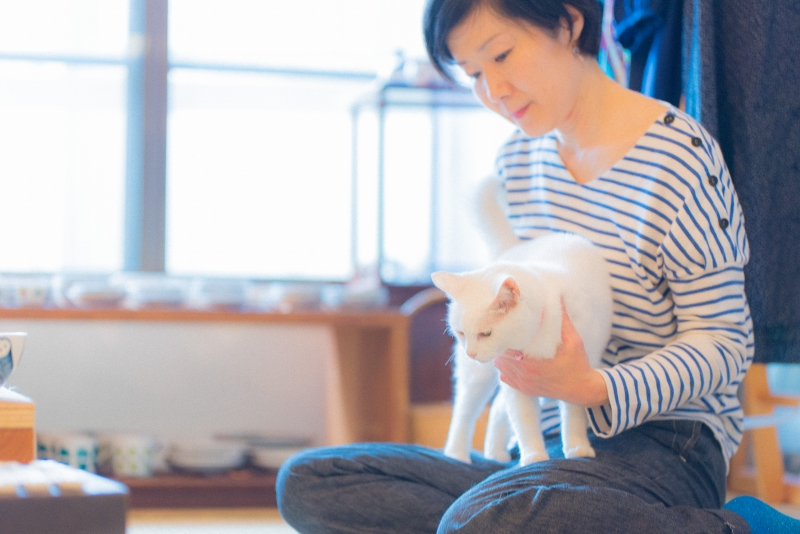 猫と一緒に記念写真を撮影できる出張タイプの写真スタジオ【ペットショット】cat-photo-0200