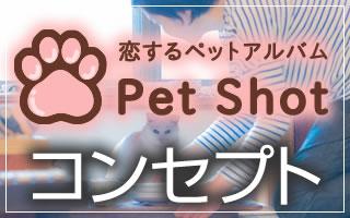 恋するペットアルバム、ペットとの記念写真・出張撮影のpetshotのコンセプト