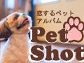 petshot120pxx90px