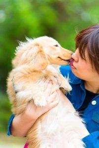 犬との記念撮影ならペットショット